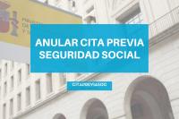 Anular Modificar Cita Seguridad Social
